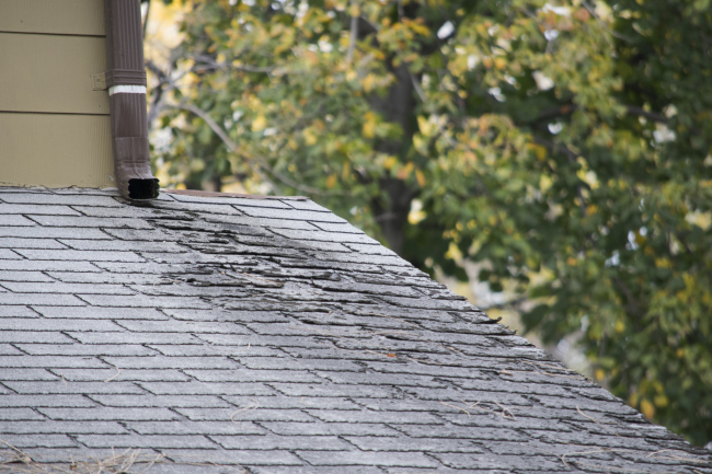 Regular Roof Maintenance Can Improve the Lifespan of Your Roof